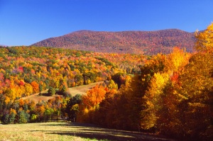 the-berkshires-fall