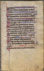 Leaf from a Psalter, s. XIII ex (Photo courtesy of Regis University, Archives and Special Collection)