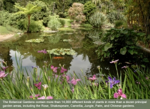 Huntington gardens_1