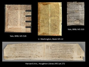Examples of Binding Fragments